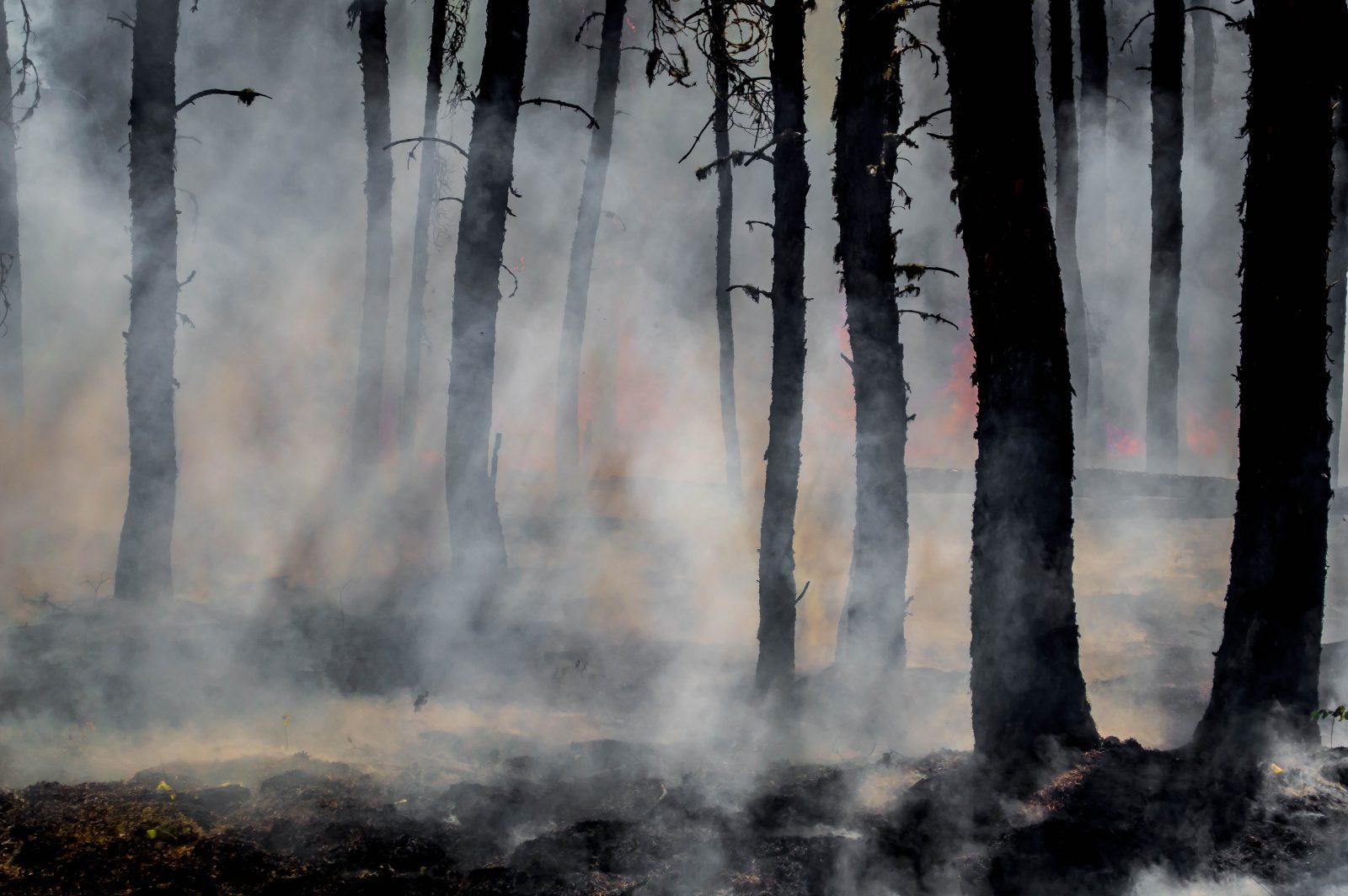 California Wildfires Keep Roaring