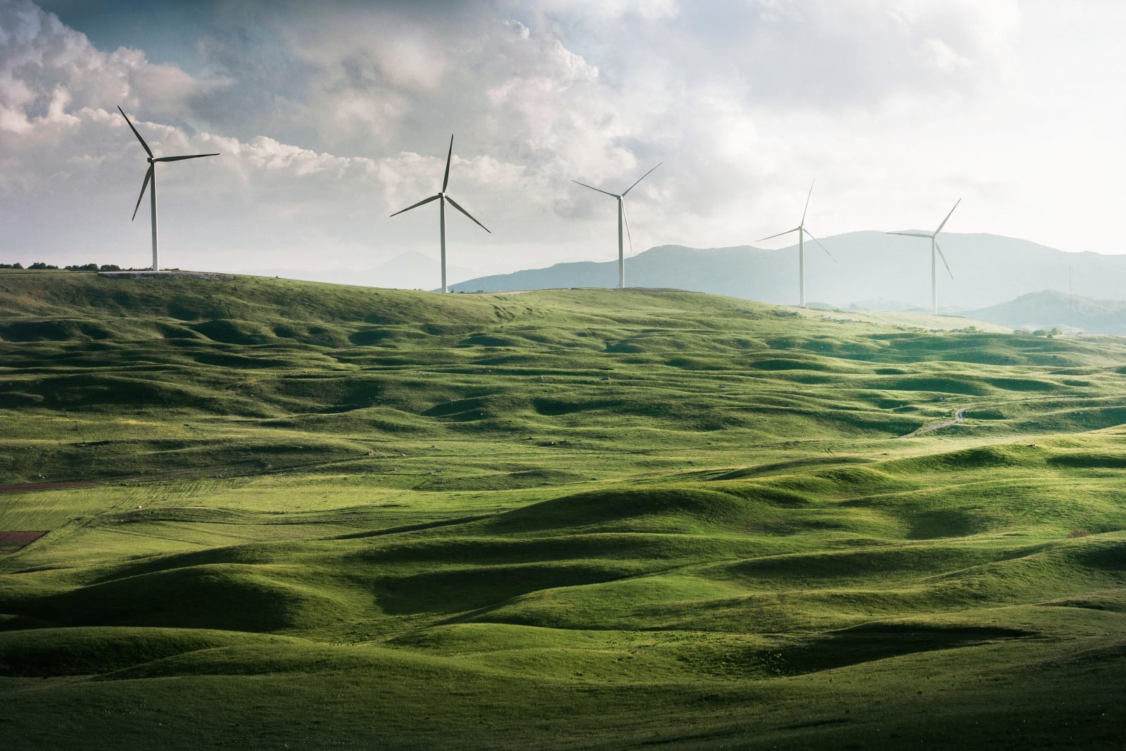 Analysis: The Energy Innovation and Carbon Dividend Act