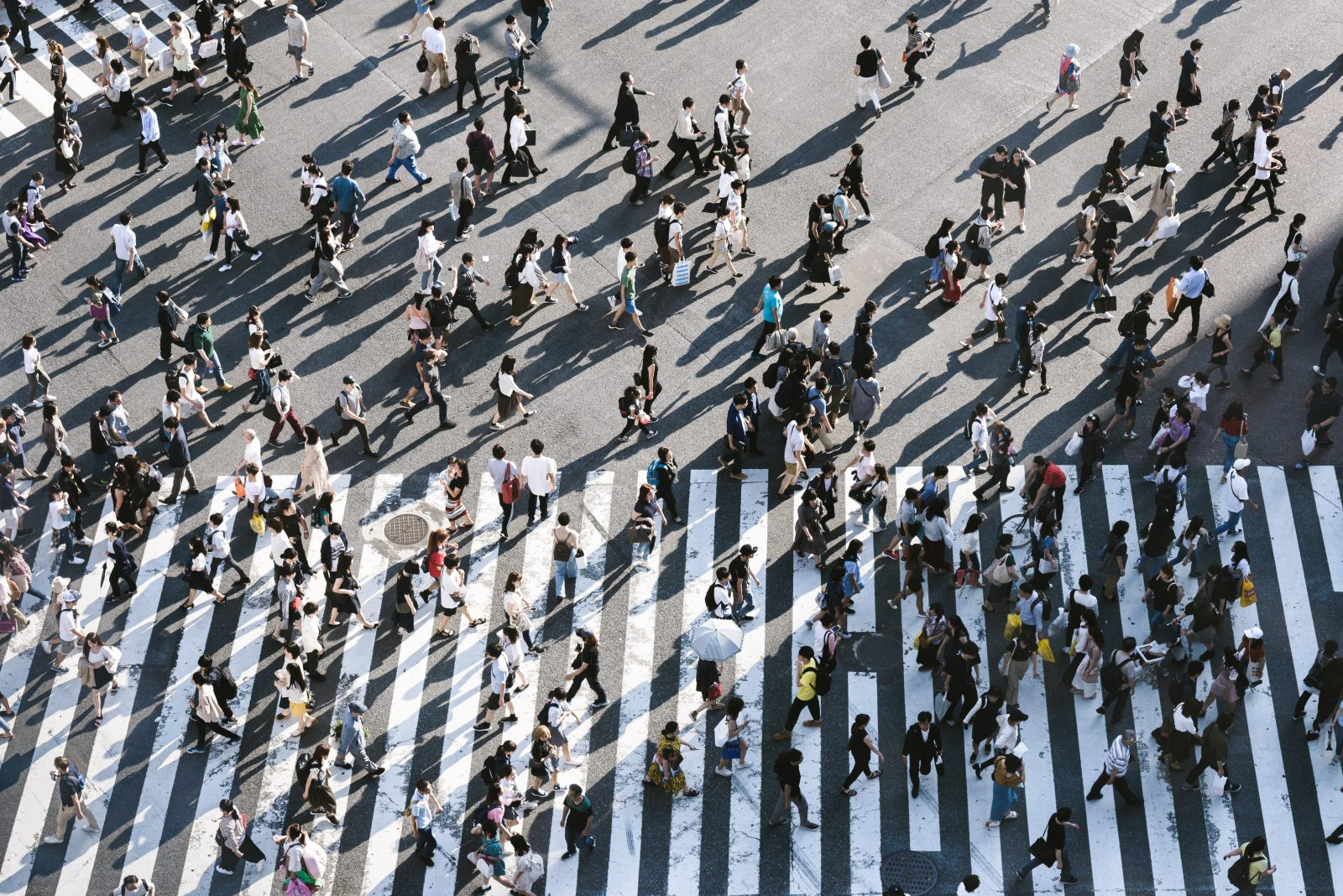 The 2020 Census – A Revolution in Understanding Who We Are or An Ill Timed Technological Experiment?