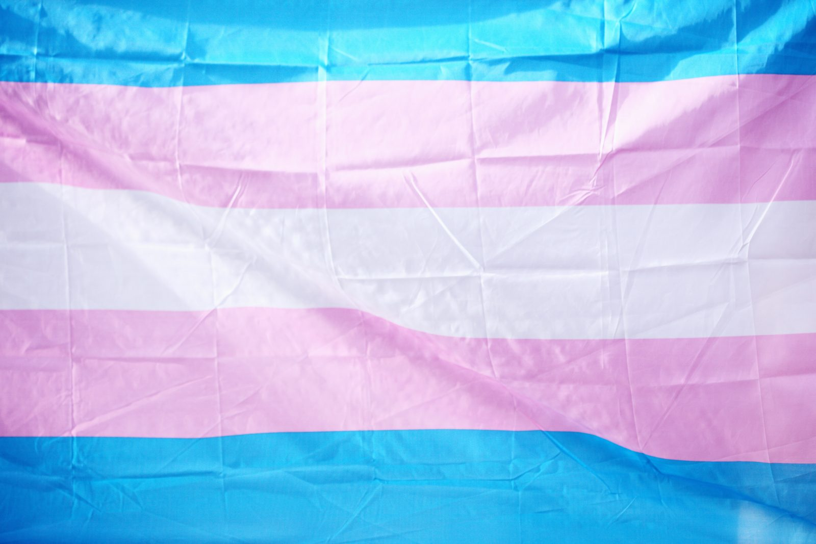 States Launch Assaults on the Rights of the Transgender Community: Part I