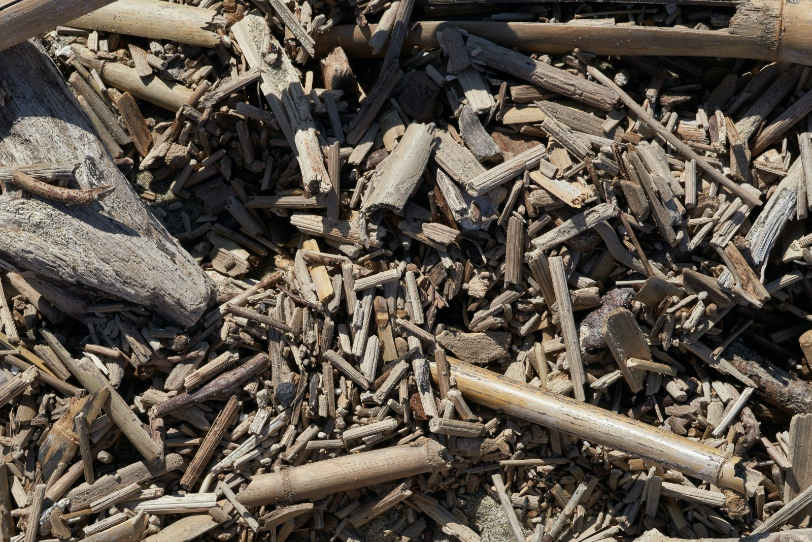 Wood Pellets: The New Renewable or the Same Old Story?
