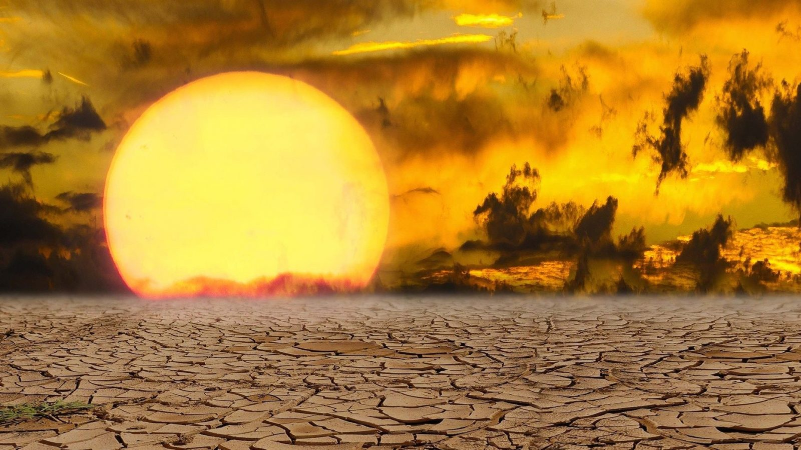 Part 2: Drought and Our Plans to Deal With it are Running Dry